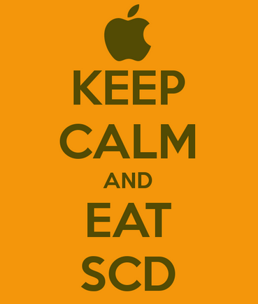 SCD Diet and Recipes