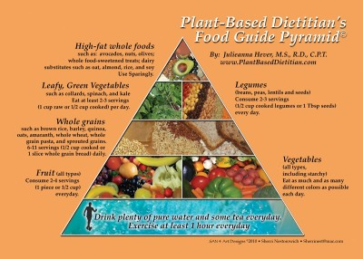 plant based raw food recipes